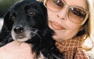 Брижит Бардо требует прекратить поставки собак из Тайланда во Вьетнам