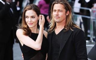 Анджелина Джоли и Брэд Питт стали виноделами