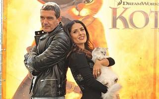 Премьера анимационной комедии «Кот в сапогах в 3D»