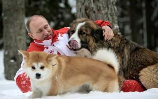 Какой породы собака у Путина
