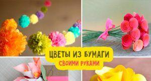 Как сделать объемные цветы из бумаги своими руками пошаговая инструкция фото и видео