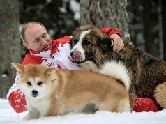 Какой породы собака у Путина фото