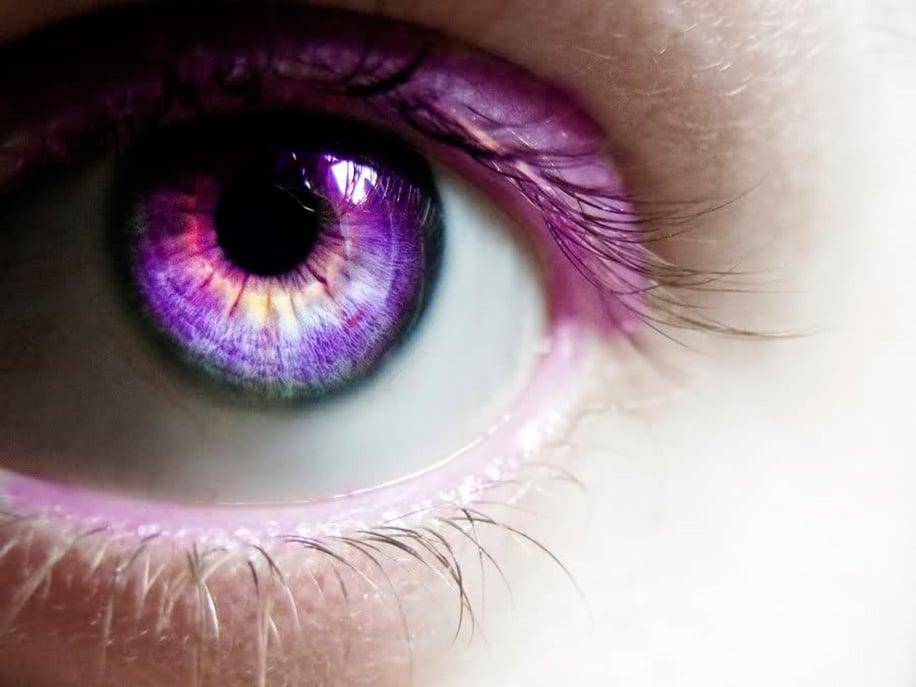 кому картинка фиолетовая с глазами основе растения